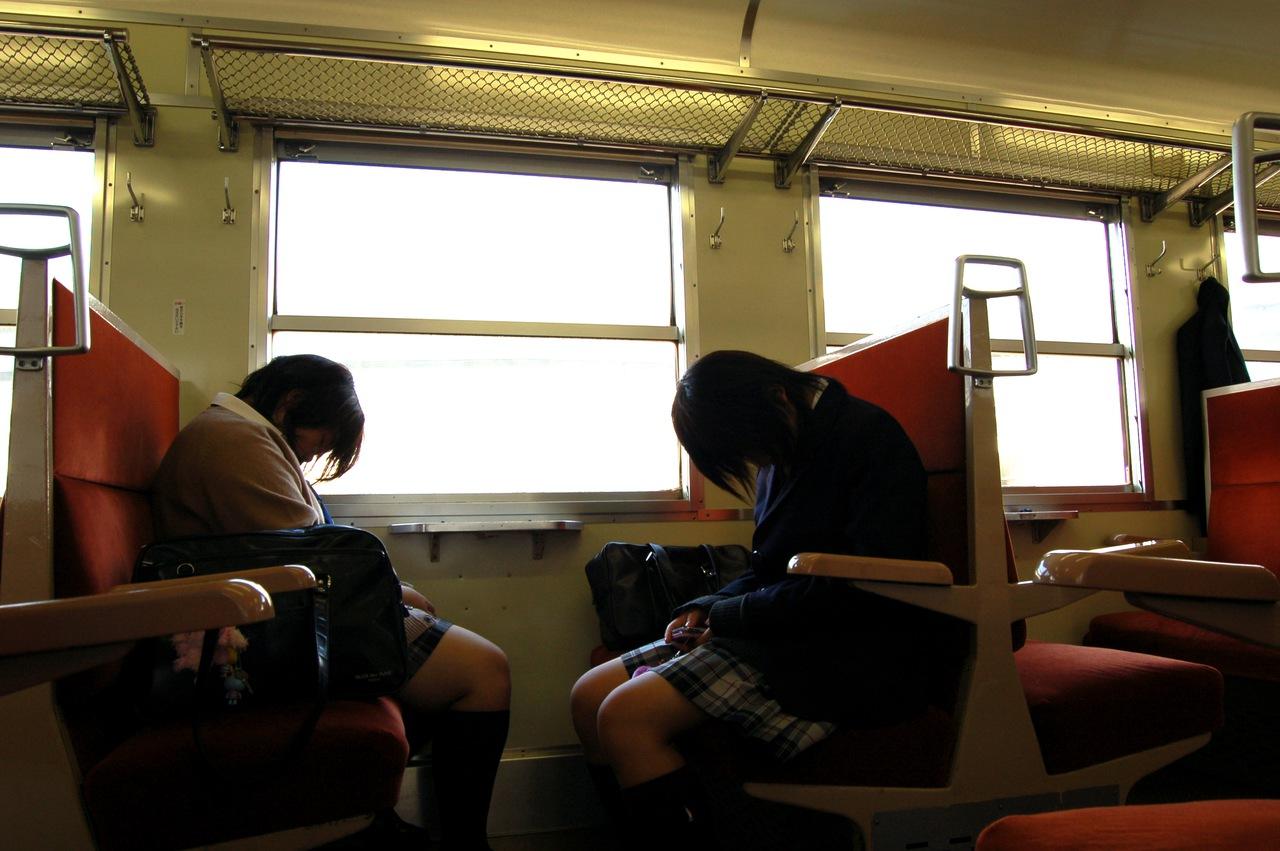 Beech trees japanese girl sleeping train